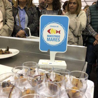 Publico Gastronoma Demo Corvina REX