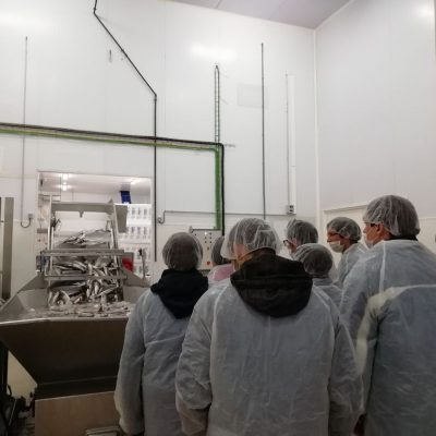 Hospital de Dia de Salud Mental de Villarreal visita planta FRESCAMAR