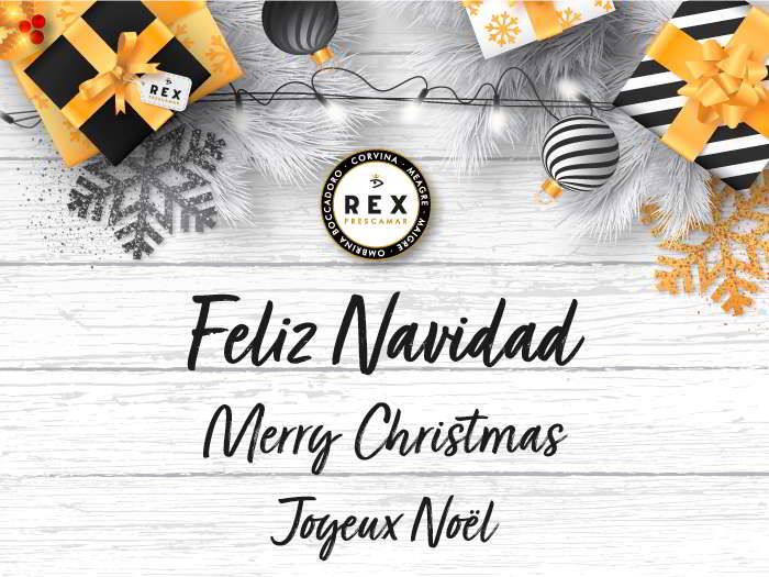Felicitacioìn-Navidad-Rex-19-blog