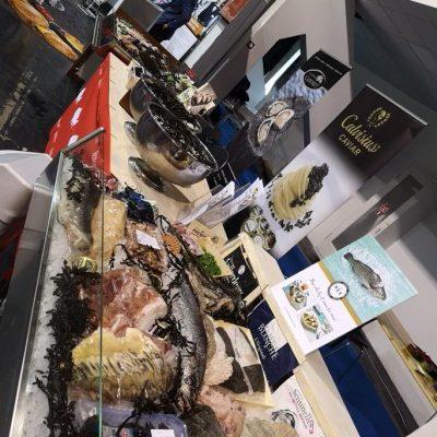 Corvina REX junto a otros productos del mar
