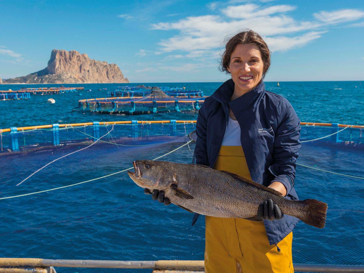 Beneficios del pescado de acuicultura y Corvina REX